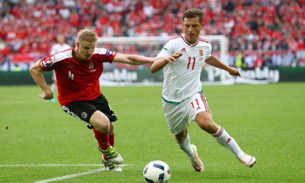 Bóng đá - Hungary vs Bồ Đào Nha 22h59, ngày 22/06