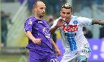 Fiorentina 1-1 Napoli (Italian Serie A 2012-2013, round 21)