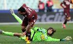 Pescara 0-2 Torino (Italian Serie A 2012-2013, round 21)