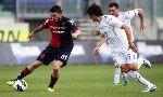Cagliari 2-1 Fiorentina (Italian Serie A 2012-2013, round 30)