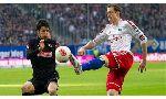 Freiburg 0-0 Hamburger (Germany Bundesliga 2014-2015, round 15)