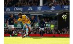 Everton 2-3 Crystal Palace (English Premier League 2013-2014, round 26)